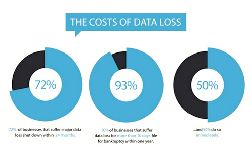 cost of data loss
